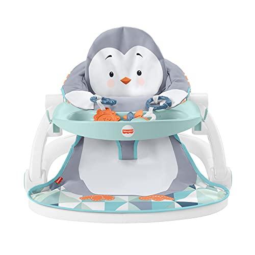 Fisher-Price siège d'activités pliable, siège de sol portable pour bébé avec 2 jouets d'éveil et plateau amovible, jusqu'à 11,3 kg, HBF27