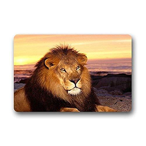 ZMvise - Felpudos de león para interiores y exteriores, con base de goma antideslizante, para puerta delantera, alfombras, 15 x 60 cm
