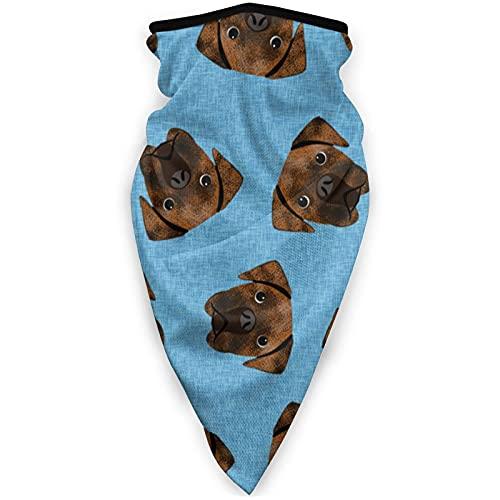 ZHANGPEIENfaqi Mascarilla para perros y perros, resistente al viento, multifunción, máscara de tubo para la cabeza, pasamontañas al aire libre, color negro