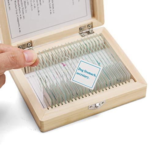 SWIFT Optical 25 Stück Mikroskop Dauerpräparate in Holzbox Objektträger Set Lern Experiment Set für Grundlegende Biologische Ausbildung Folien Tier Pflanzen Insekten Gewebe Proben