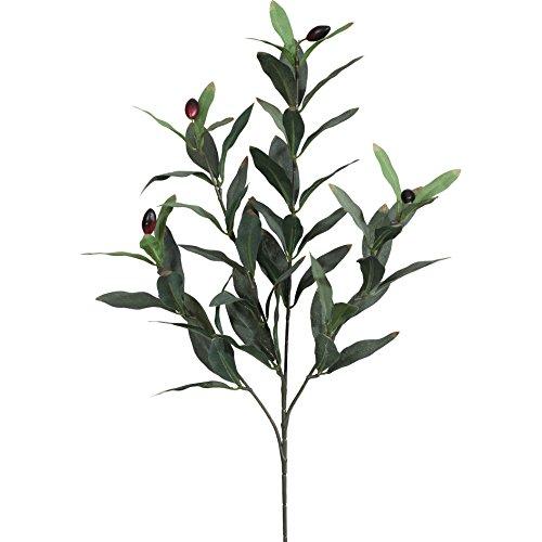 Unbekannt Künstlicher OLIVENZWEIG ca 50 cm, ca 66 Blatt. EIN Oliven AST, Zweig mit 4 Trieben.