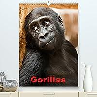 Gorillas (Premium, hochwertiger DIN A2 Wandkalender 2022, Kunstdruck in Hochglanz): Die sanften Riesen Afrikas (Monatskalender, 14 Seiten )