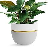 Omysa Large Plant Pot