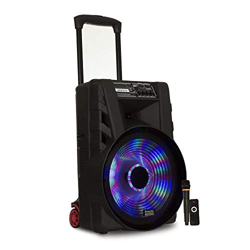 """Acoustic Audio by Goldwood Stage Subwoofer, 15"""" (PRTY15FC)"""