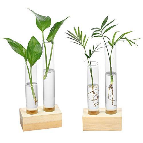 Yangbaga Blumenvase aus Glas, Glasvase Tischvase Dekovase Holz Halter, Deko Hydroponik für Hydrokultur Pflanzen Home Garden