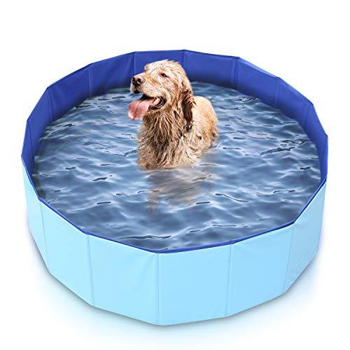 Mirtillo & Memole Hundepool, Kleiner Pool, großer XL-Pool, Pool für große Hunde, Klapppool, extra großer hoher Pool, starrer Hundepool, Minipool, starre Außenpools (80 x 30, Blau)
