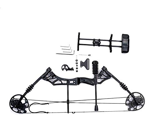 IRIS 30-60lbs Compound Bow Kit with 5 Pin Lighted Sight, 6 Carbon Arrow, BCY String for Outdoor Sport, Adjustable 16-31 in Draw Length and IBO 320 FPS, rubber, black