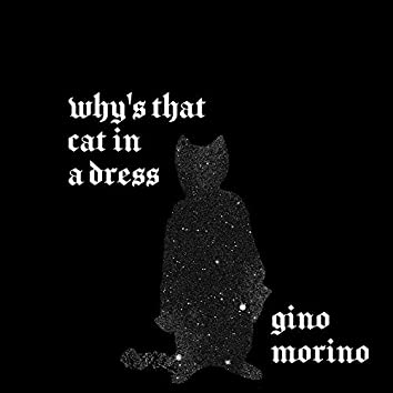 Why's That Cat in a Dress