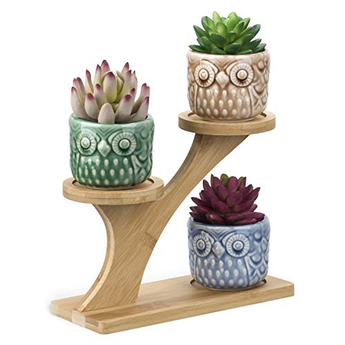 OUSHINAN Mini White Ceramic Owl Garden Pots Decorative Nursery Succulent Planters with 3- Tier Bamboo Tray for Room Decor (3 Owl Pots in 1 Treetop Bamboo Stands)