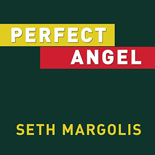 Perfect Angel audiobook cover art