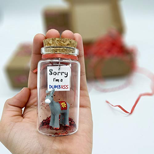Apology Gift for Her or Him I'm Sorry Funny Gag Gift for Girlfriend or Boyfriend Miniature in a Bottle. Unique (Regretful)