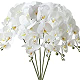 FagusHome 5 Piezas 80cm Flores Artificiales Orquídea Phalaenopsis Mariposa Artificiales Flores de Orquídea Flores de Phalaenopsis para Decoración