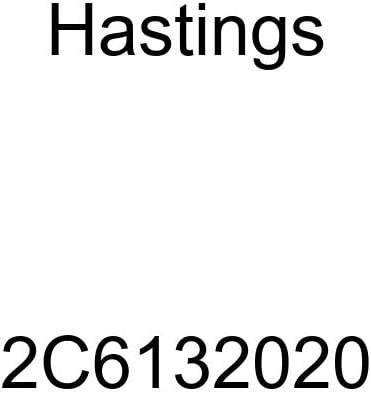 Hastings National products 2C6132020 2-Cylinder Piston Ring Set National uniform free shipping