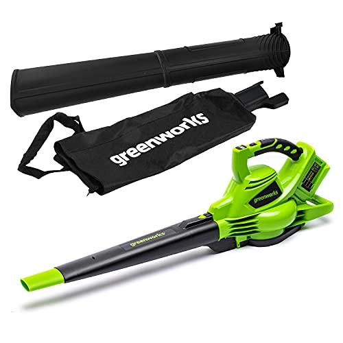 Greenworks Tools Aspiratore e Soffiatore a Batteria 2in1 GD24X2BV, Li-Ion 2x24V, Intensità aria 321km/h, Sacco raccoglitore, regolazione giri motore brushless potente senza batteria e caricatore