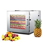 Danrelax Food Dyhrator Machine with 10 Stainless Steel Trays, Digital Timer and Temperature Control for Beef, Jerky, Fruit, Dog Treats, Herbs
