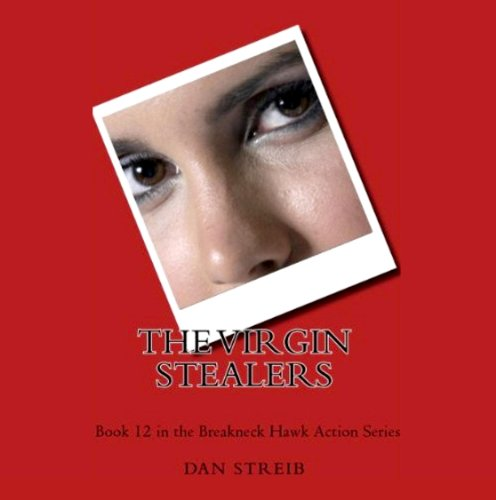 The Virgin Stealers cover art