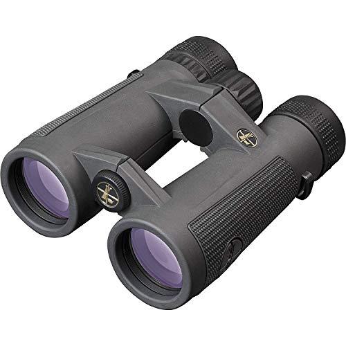 Leupold BX-5 Santiam HD 10x42mm Binoculars, Shadow Gray (174483)