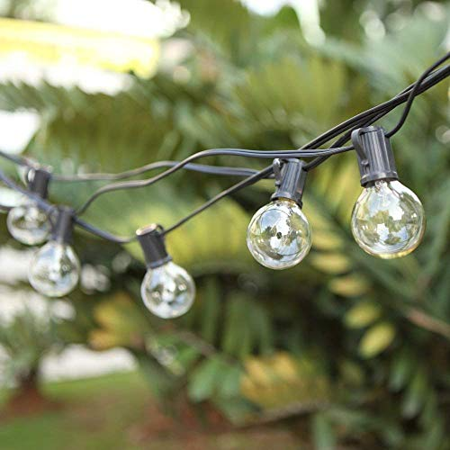 G40 Outdoor String Bulb Lights with 25 Clear Globe Bulb(2 Replacement Bulbs)- UL Certified 25Ft Waterproof String Lights Outdoor/Indoor Decoration for Party, Garden, Wedding, Patio, Backyard Warm White(Black Wire)