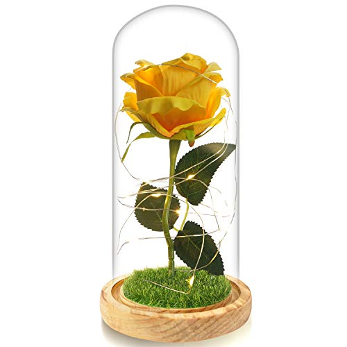 Beferr Beauty and The Beast Rose Enchanted Flower with LED Light in Glass Dome for Christmas Valentine's Day Mother's Day Birthday Best Gifts for Girlfriend Wife Women Her - Yellow