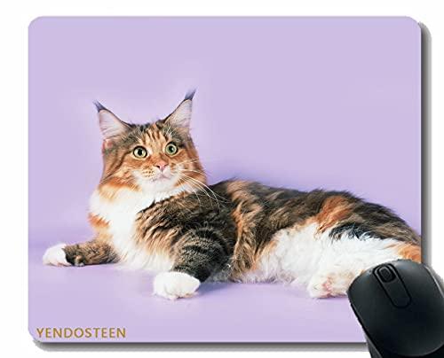 Almohadilla de ratón de Goma Antideslizante, Gato mentir Manchado Maine Coon 57773 Base de Goma Antideslizante Mousepad