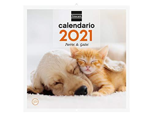 Finocam 780303921 - Calendario de pared 2021 Escribir Imágenes 300x600 mm - 30x30 Perros y gatos Español