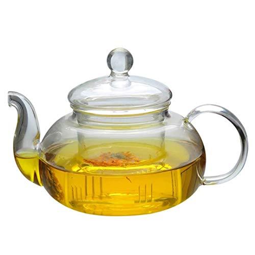 WxberG Tetera de vidrio (32 onzas/1 L) con infusor de vidrio de té extraíble para té floreciente y hojas sueltas (tamaño: 600 ml)
