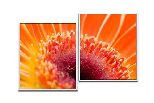 Paul Sinus Art Macro de One Fleur 130 x 90 cm (2 Photos env. WTD Toile décorative montée sur châssis pour Ombres Blanc 75 x 65 cm