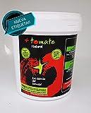 Tomate Natural en Polvo Deshidratado - El NUEVO ingrediente - No se estropea, No necesita frio - 'Todo el sabor y propiedades del tomate fresco' - Producto de Extremadura [ 500 gr ]