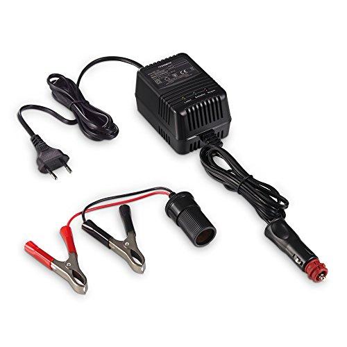 DOMETIC  PerfectBatter BC 100 hält Batterien einsatzbereit, ideal für Motorräder, Reisemobile, Boote und Oldtimer