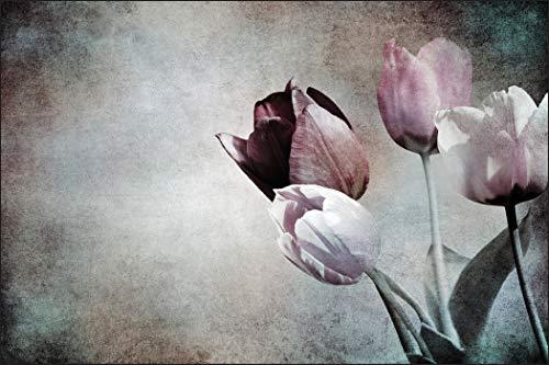 Muralo Fototapete Blumen 150 x 225 cm Vlies Tapete Wandtapeten Tulpen Optik Vintage Wohnzimmer Schlafzimmer Moderne Wandbilder XXL Pflanzen Natur Wand Dekoration