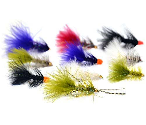 Outdoor Planet 26 Crystal Bugger/Woolly Bugger/Egg Sucking Leech + Waterproof Fly Box with Dry/Streamer Trout Fly Fishing Flies Lure