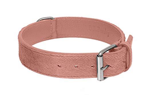 BB_Bardog Collar artesanal de piel estilo caballito rosa, talla S (Artisan Collar Calf Hair Leather Powder Pink, Size S)