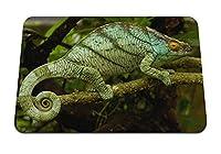 26cmx21cm マウスパッド (カメレオン草の小枝が座っています。) パターンカスタムの マウスパッド