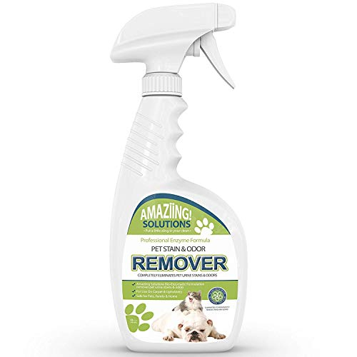 Amaziing Solutions Pet Odor Eliminator and Stain Remover...
