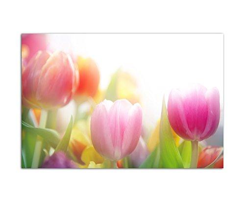 120x80cm - Fotodruck auf Leinwand und Rahmen Tulpen Blumen Frühling farbenfroh - Leinwandbild auf Keilrahmen modern stilvoll - Bilder und Dekoration