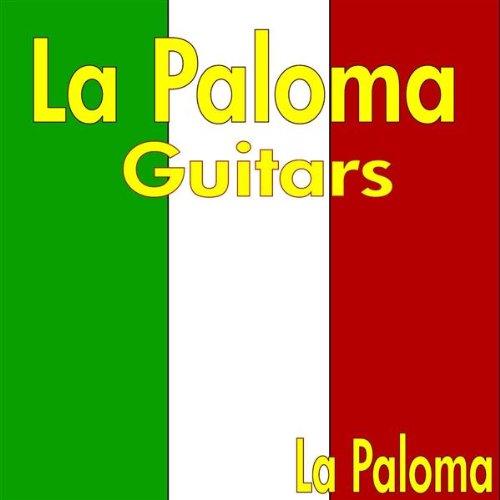 Nylon String Guitar Solo