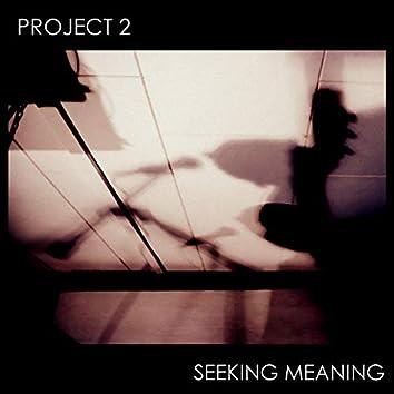 Seeking Meaning