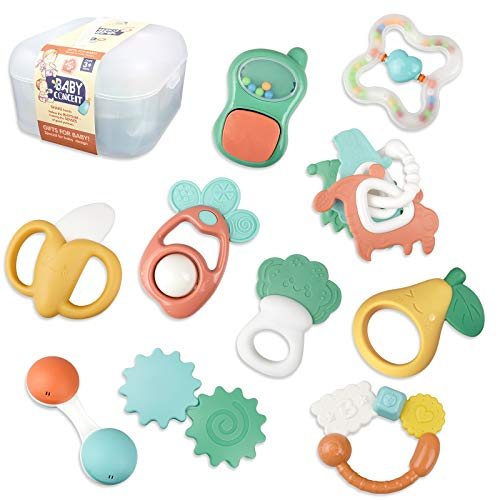Baby Rattle Toys- 12PCS Baby Toys 6 to 12 Months Baby Rattles Shaker, Grab and Spin Early Educational Toys Teethers Toys for Babies 3-6 Months Newborn Boy Girls Toys Baby Gifts