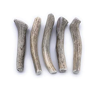 Perfect Pet Chews Deer - Antler Dog Chew - Grade A, All Natural, Organic, and Long Lasting Treats - Made from Naturally Shed Antlers in The USA - Medium Treat - 5-Count