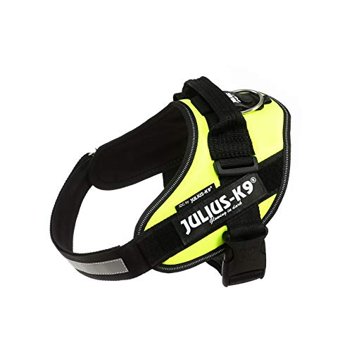 Julius-K9, 16IDC-FNE-0, IDC Powerharness, dog harness, Size: 0, UV Neon Green