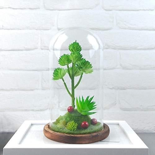 suluxin Mode, Gypsophila, Hochzeit,Gartengestalten Sie Kreatives Geschenkglashandwerk Der Saftigen Glasabdeckung Der Ökologischen Flaschendekoration Landschaftlich