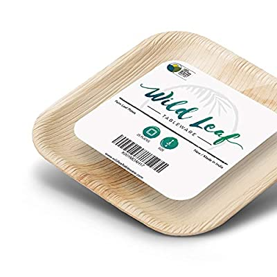 All Natural Palm Leaf Plates, 25 Pack Biodegradable Heavy Duty Dinner Party Plates - Comparable to Bamboo Wood Fiber - Elegant and Eco Friendly Plant Based Tableware by Wild Leaf