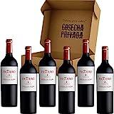 Figuero 4 - Envío Gratis 24 H - 6 Botellas - Ribera del Duero - Estuche Regalo Vino - Seleccionado y enviado por Cosecha Privada