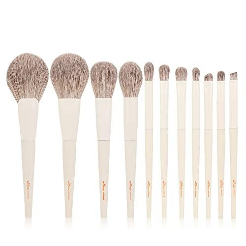 Anmor 11pcs Makeup Brushes, Premium Makeup Brush Set for Powder Blush...