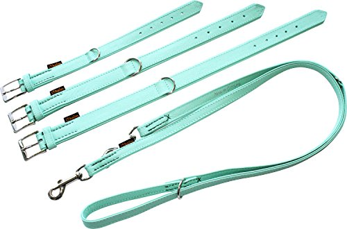 Unbekannt Heim 3784454 Halsband, Colour, genäht, 2X Boxleder, 30/45 cm, Mint
