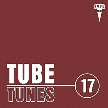 Tube Tunes, Vol.17
