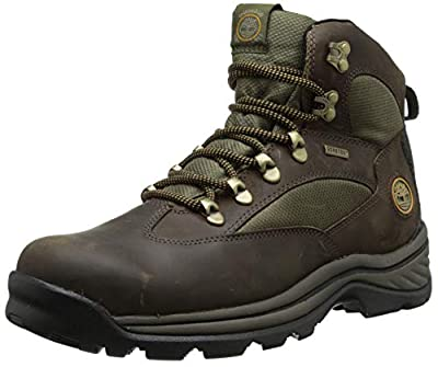 Timberland Men's Chocorua Trail Mid Waterproof, Brown/Green, 9 EE - Wide