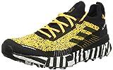 adidas Terrex Two Ultra Parley, Chaussures de Running Compétition Homme, Dorsol/Negbás/FTW Bla, 45 1/3 EU