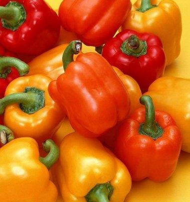 200 graines géantes épices Spicy Red Hot Chili Pepper Graines Plantes cour jardin de bonsaïs en pot balcon graines de plantes Nouvelle arrivée 9