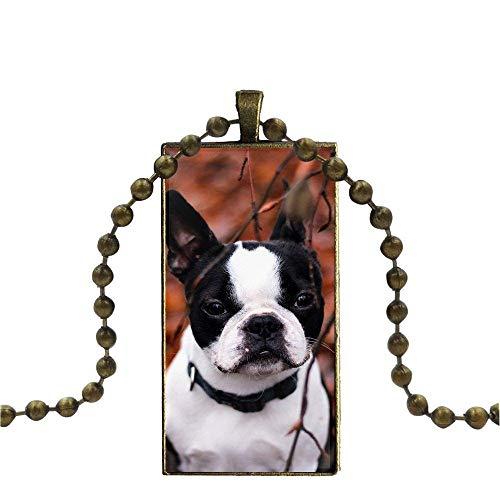 CLEARNICE Bulldog Francés para Los Niños De La Moda De La Moda Cristal...